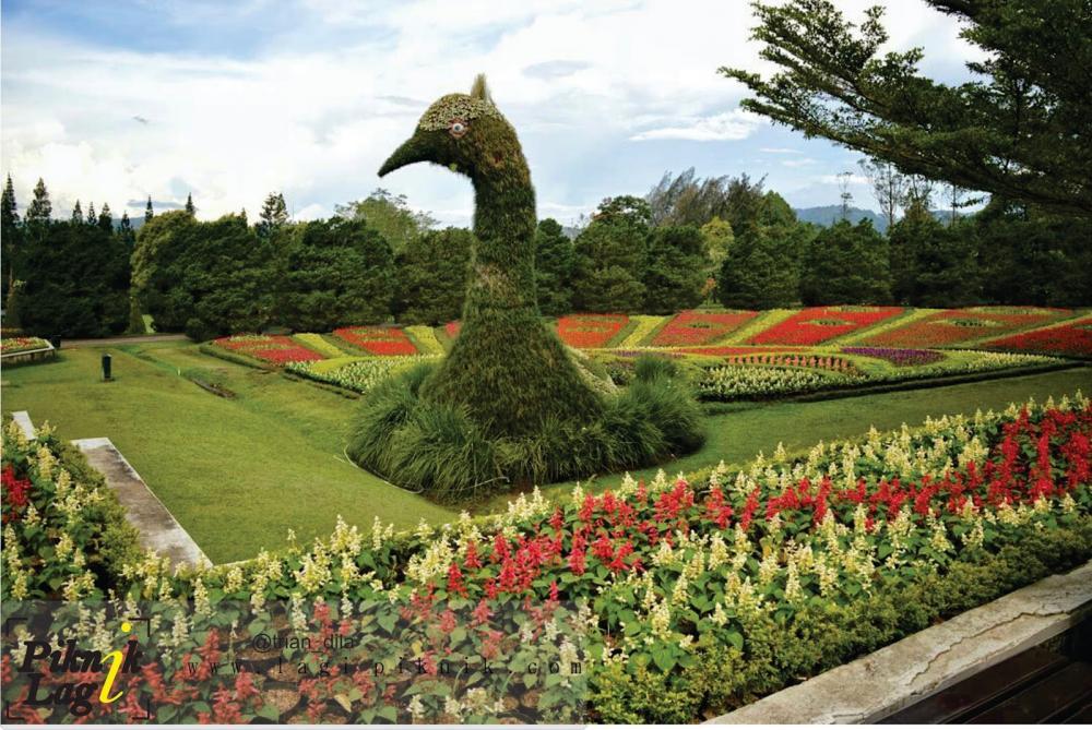 1. Taman Bunga Nusantara